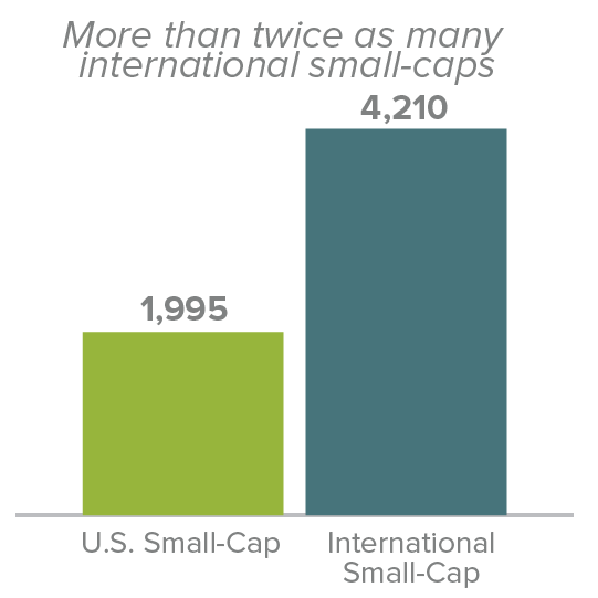 Number of Stock in International Small-Cap