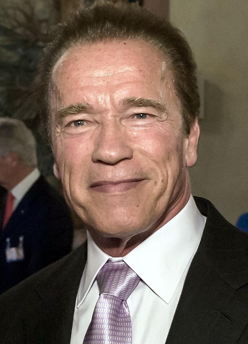 An up-close photo of Arnold Schwarzenegger in co-operate wear to show that he is