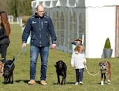 <p>Princess Anne's daughter Zara and her husband Mike are often seen with their three dogs at equestrian events (Zara is an Olympic medal-winning eventing competitor). Their children, Mia and Lena, are clearly very attached to the pups.</p>