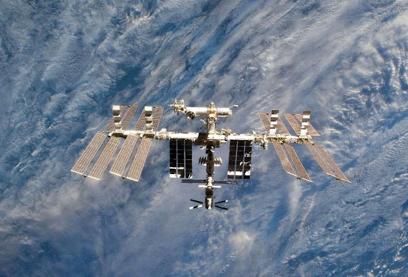 Mouse sperm was freeze-dried and sent for nine months to the International Space Station, which orbits about 250 miles (400 kilometers) above the Earth (AFP Photo/HO)