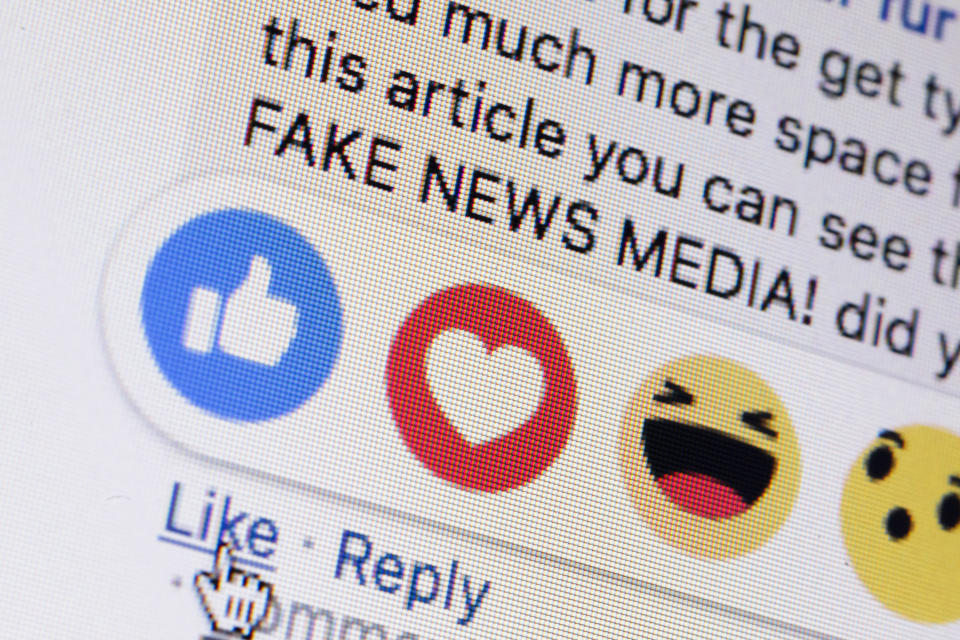 Berlin, Germany - March 01: Symbolic photo on the topic of fake news in social media. Next to the 'like me' button from facebook the words 'fake news media' are displayed on a computer screen on March 01, 2019 in Berlin, Germany. (Photo Illustration by Thomas Trutschel/Photothek via Getty Images)