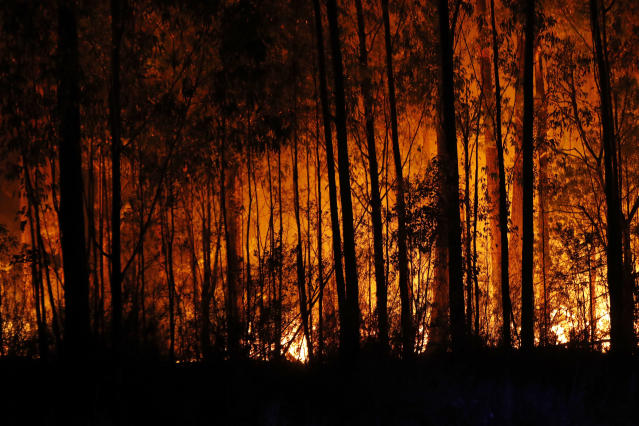 Bushfires are seen between the towns of Orbost and Lakes Entrance in east Gippsland on Jan. 02, 2020 in Australia. (Photo by Darrian Traynor/Getty Images)