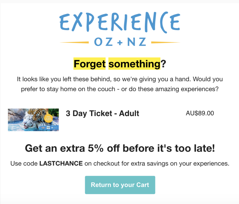 Photo shows email with discount code on item left in an online shopping cart.
