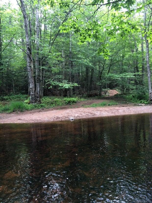 This photo from July 2020 shows the makeshift trail that is being used by ATVers who cross the Fales River, says Katie McLean with the Clean Annapolis River Project. (Rachel Walsh - image credit)