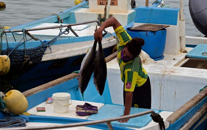 The Galapagos islands are also concerned about Chinese fishing activities - Rodrigo Buendia/AFP