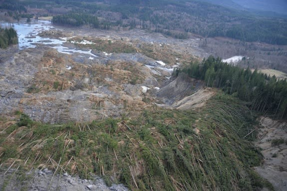 The landslide buried houses and flattened trees near Oso, Wash.