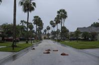 Palm leaves lay on the ground following heavy rain and wind from Tropical Storm Elsa, Wednesday, July 7, 2021 in Westchase, Fla. The Tampa Bay area was spared major damage as Elsa stayed off shore as it passed by. (Arielle Bader/Tampa Bay Times via AP)