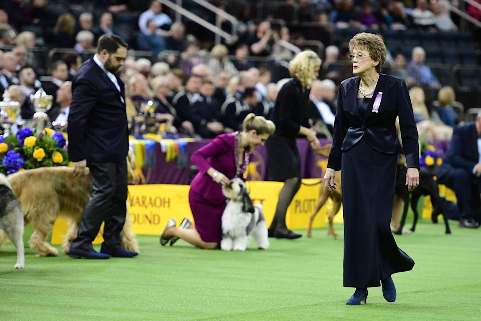 Hound Group Judge Ms. Patricia Craige Trotter looks on during the 143rd Westminster Kennel Club Dog Show at Madison Square Garden on February 11, 2019 in New York City.