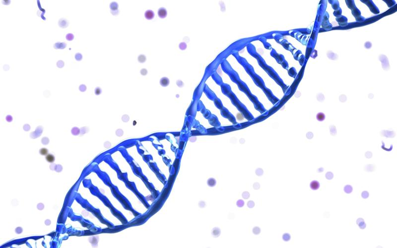 Each time a normal cell divides and copies its DNA to produce two new cells, it makes multiple mistakes - Credit: REX