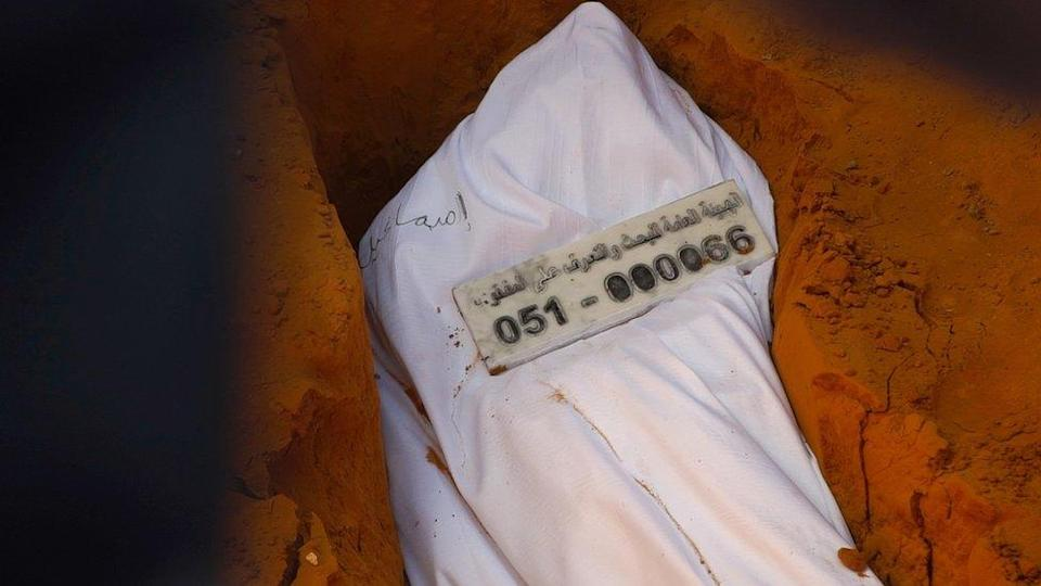 Esmail Mahmoud's marker bears a DNA number: 051-000066