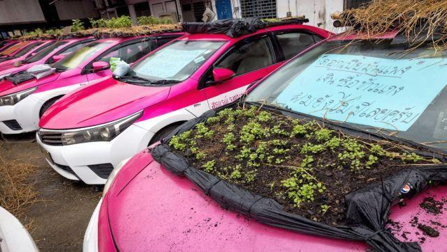 Workers at the Ratchaphruek Taxi Cooperative built the miniature gardens by stretching black bin liners across bamboo frames and covering them with soil. They then planted a variety of crops, including chillies, cucumbers and courgettes. AFP