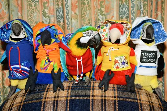 <p>Bubba Cyan wears her red hoody next to her favorite soft toy friends. (Ed Remedio/Caters News Agency) </p>