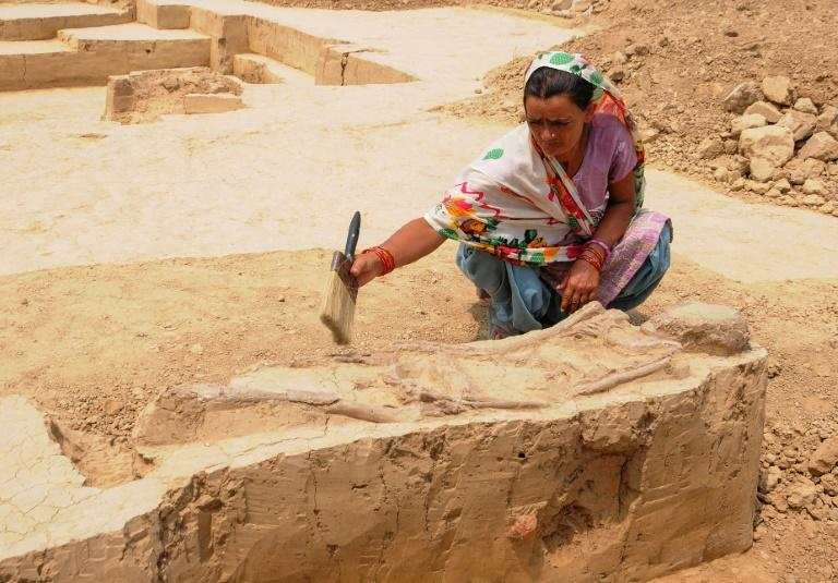A woman cleans a burial site belonging to the Indus Valley Civilization during an archeological excavation in Baghpat, India in 2018; scientists have sequenced the genome of an individual from the ancient civilization for the first time (AFP Photo/-)