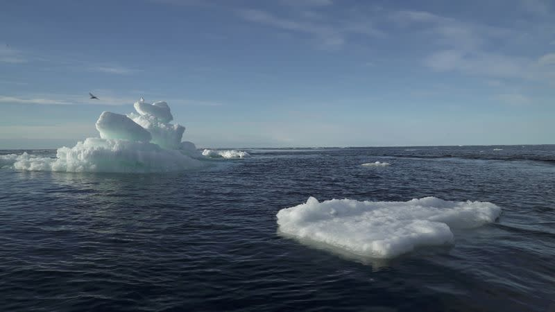 FILE PHOTO: Floating ice is seen during the expedition of Greenpeace's Arctic Sunrise ship in the Arctic Ocean