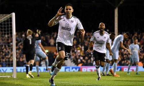 Aleksandar Mitrovic heads Fulham past Sunderland to boost promotion hopes