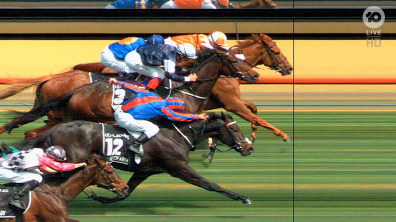 Australian horse Vow and Declare , pictured winning the Melbourne Cup.