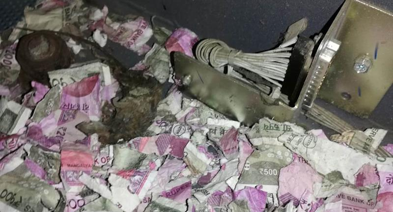 Rat Chews Up Nearly $18,000 and Dies in ATM