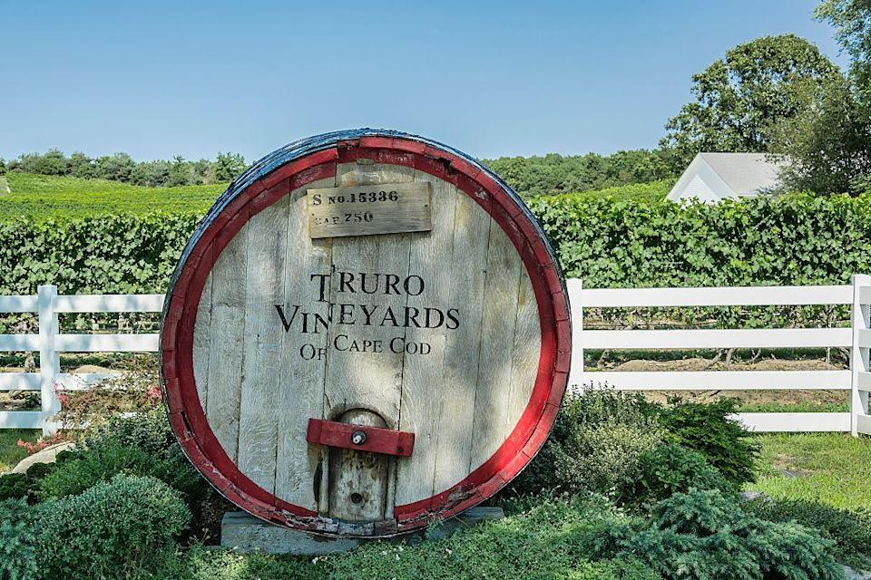 """<p>Cape Cod is a special place that tends to inspire visitors to kick back and enjoy a glass of wine — and there's no better spot than <a href=""""https://trurovineyardsofcapecod.com"""" rel=""""nofollow noopener"""" target=""""_blank"""" data-ylk=""""slk:Truro Vineyards"""" class=""""link rapid-noclick-resp"""">Truro Vineyards</a>. If you're looking to explore before cocktailing, take a drive down to <a href=""""https://www.provincetown-ma.gov"""" rel=""""nofollow noopener"""" target=""""_blank"""" data-ylk=""""slk:Provincetown"""" class=""""link rapid-noclick-resp"""">Provincetown</a> to shop at the cute, local stores on Commercial Street. Provincetown is a great place to take kids for a summer filled with pools, pristine beaches and nonstop fun.</p>"""