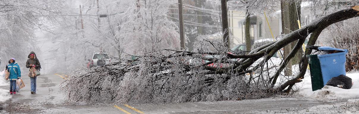 Two girls have to walk around downed trees in Lansing, Mich. on Sunday, Dec. 22, 2013. Winter arrived in Michigan with an icy blast, sending freezing rain across a wide section of the Lower Peninsula and knocking out electrical service to at last 294,000 homes and businesses. The state's largest utilities say it will be days before most of those blacked out get their power back because of the difficulty of working around ice-broken lines. (AP Photo/Lansing State Journal, Robert Killips)