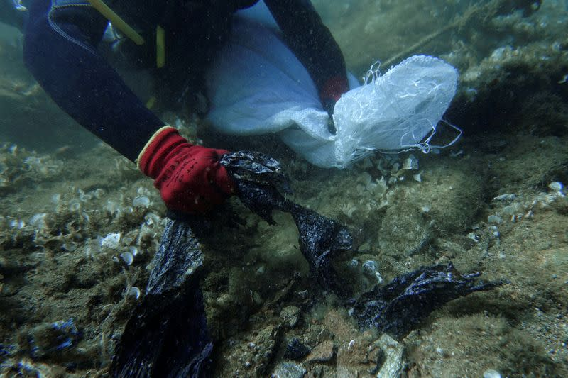FILE PHOTO: A volunteer diver of the environmental group Aegean Rebreath gathers plastic waste from the bottom of the sea, off the island of Andros