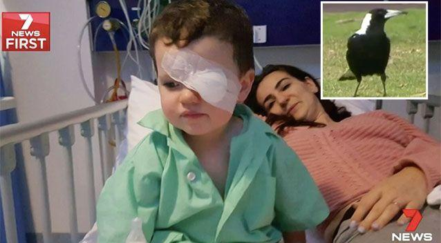 Jacob Gale may lose sight in one eye after a magpie attack. Source: 7 News