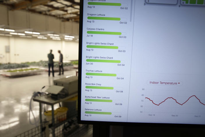 In this Thursday, Sept. 27, 2018, photo the temperatures of some two dozen plant varietals are monitored at Iron Ox, a robotic indoor farm, in San Carlos, Calif. At the indoor farm, robot farmers that roll maneuver through a suburban warehouse tending to rows of leafy, colorful vegetables that will soon be filling salad bowls in restaurants and eventually may be in supermarket produce aisles, too. (AP Photo/Eric Risberg)