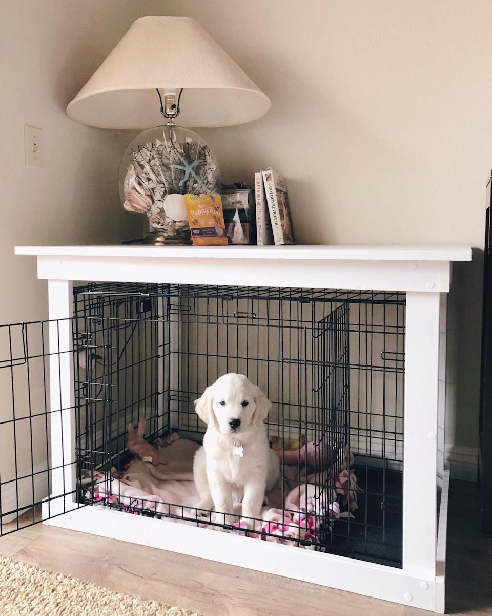 """<p>Little baby girl has loved her new """"den"""" - and I had her crate-trained at night within the first month of bringing her home (a frozen peanut-butter-stuffed Kong definitely helped with this). The piece also serves as a console table for my favorite seashell lamp, a photo of my puppy and me, my Golden Retriever books, and a handful of pup things I like to have on hand and accessible. Plus, knowing that I made this myself (with my dad!) makes it extra meaningful and a cherished piece in my home.</p>"""