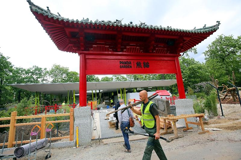 The Berlin Zoo built a special enclosure for the two pandas it is receiving from China just a few days before a G20 summit in Germany (AFP Photo/Wolfgang Kumm)