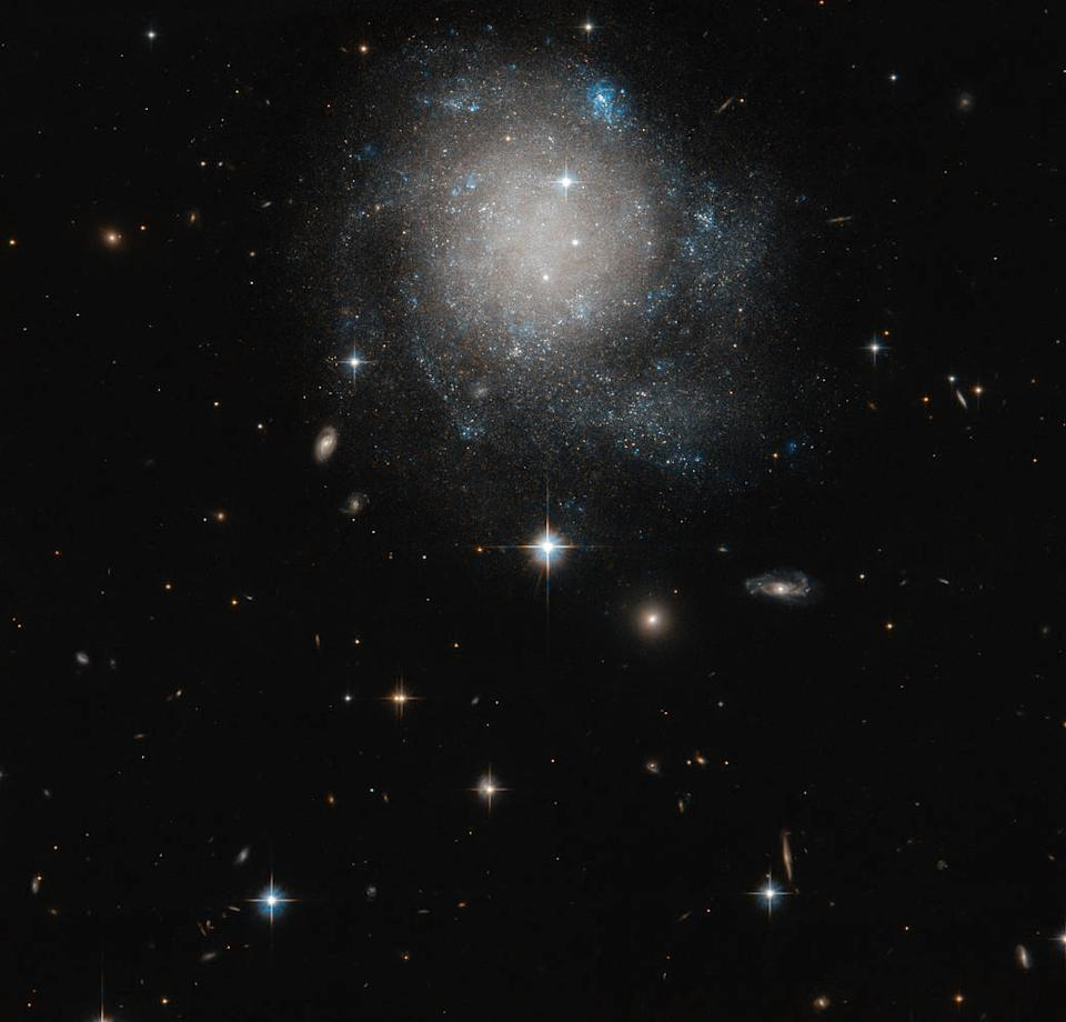 "The faint galaxy UGC 12588 looks kind of like a cosmic cinnamon bun in this image snapped by the Hubble Space Telescope. The spiral galaxy, which appears circular with some white accents (adding to its dessert-like appearance), can be found in the constellation Andromeda.  Now, while UGC 12588 is a spiral galaxy, its ""arms"" of stars and gas are fairly faint and closely swirled in its center, making it slightly different from a ""classic"" spiral galaxy."