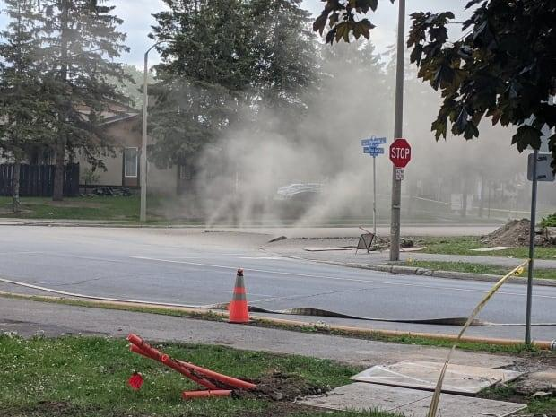 An underground pipe leaked natural gas Thursday afternoon, according to Ottawa Fire Services. Residents in the surrounding area were asked to keep doors and windows closed, and follow directions from first responders.  (Scott Stilborn/OFS - image credit)