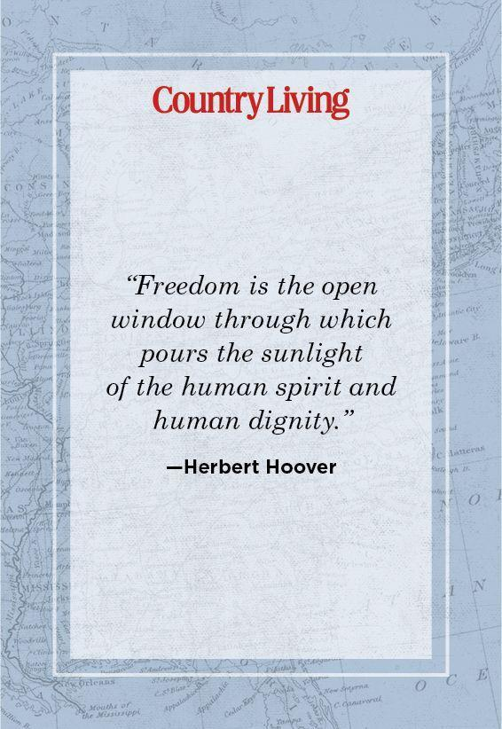"""<p>""""Freedom is the open window through which pours the sunlight of the human spirit and human dignity.""""</p>"""