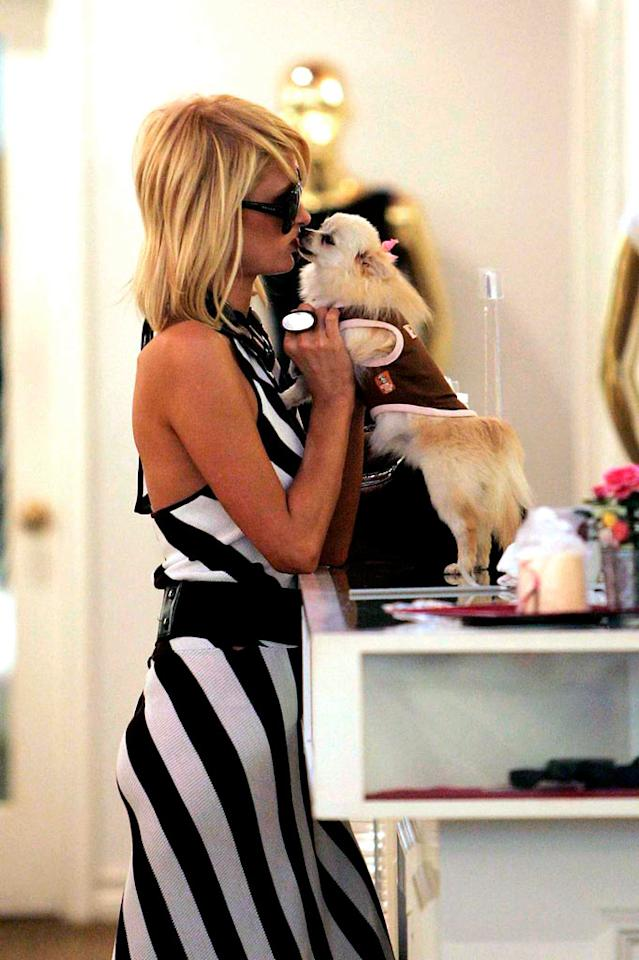 "Paris and one of her many petite pooches share a smooch while out shopping. Gerallt Radcliffe/Matt Symons/<a href=""http://www.pacificcoastnews.com/"" target=""new"">PacificCoastNews.com</a> - July 25, 2008"