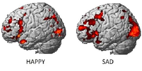 Feeling Envious or Lustful? Brain Scans Can Tell