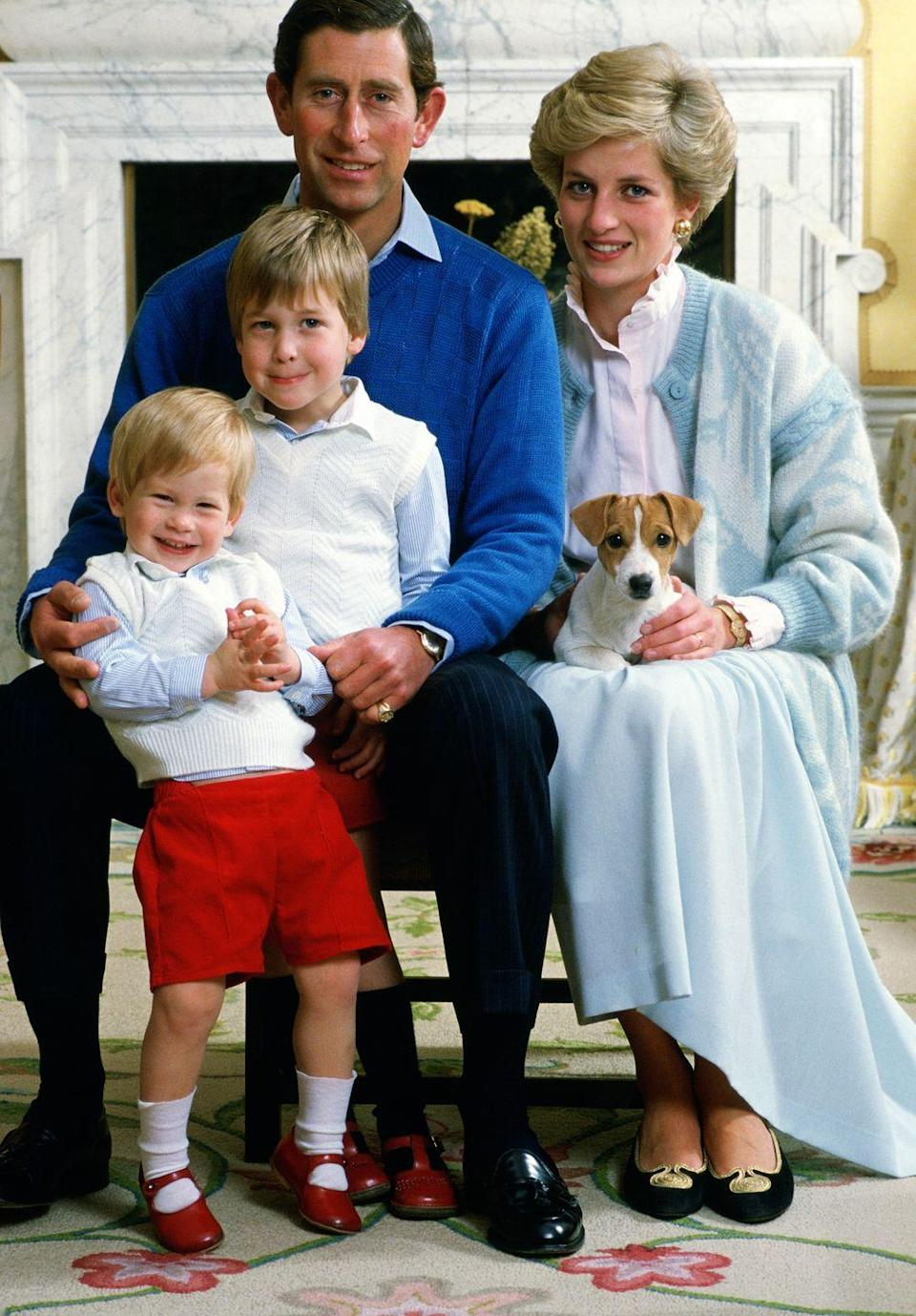 <p>Prince Charles, Princess Diana, Prince William, and Prince Harry pose for a portrait at home in Kensington Palace with their dog. Harry's mischievous smile is too cute—and so are his and William's matching shoes.</p>