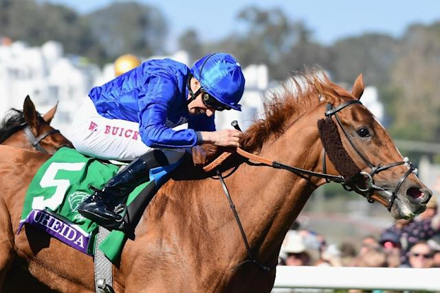 William Buck celebrates after riding Wuheida to a win in the Breeders' Cup Filly & Mare Turf race on day two of the 2017 Breeders' Cup World Championship, at Del Mar Race Track in Del Mar, California, on November 4 (AFP Photo/Harry How)