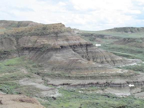 Rock layers near Jordan, Mont., exposing the level (lower arrow) where the dinosaurs and many other animals and plants went extinct. The arrows point to coal beds which contain thin volcanic ash layers that were dated.