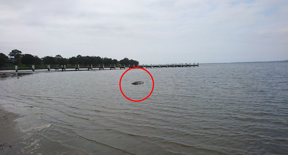 Photograph of Lake Illawarra and pier. A red circle highlights the crab trap in the distance.