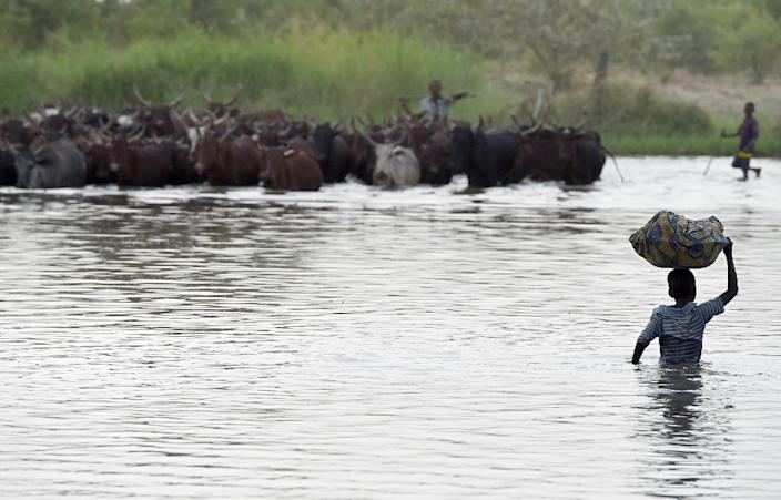 Lake Chad -- whose waters border Niger, Nigeria and Cameroon -- was overrun by Boko Haram during the nine year conflict and authorities have struggled to rid the region of the jihadists (AFP Photo/PHILIPPE DESMAZES)
