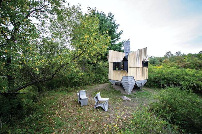 An irregularly shaped cabin in the woods built using infested ash trees.