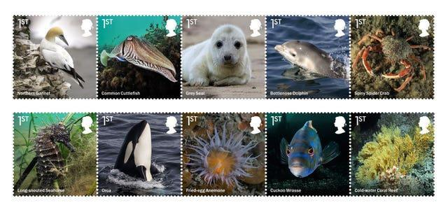 The new stamp collection