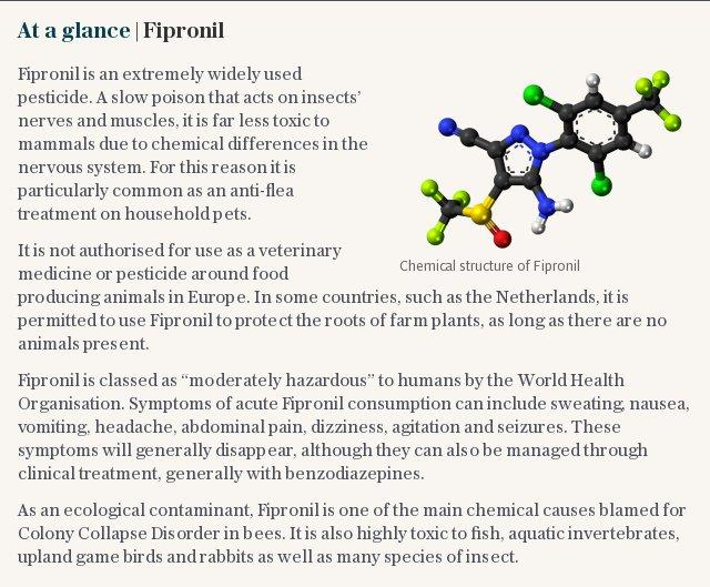 At a glance | Fipronil