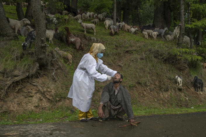 A Kashmiri doctor in protective suit takes a nasal swab sample of a nomad to test for COVID-19 in Budgam southwest of Srinagar, Indian controlled Kashmir, Tuesday, May 18, 2021. India's total virus cases since the pandemic began swept past 25 million on Tuesday as the country registered more than 260,000 new cases and a record 4,329 fatalities in the past 24 hours. (AP Photo/ Dar Yasin)