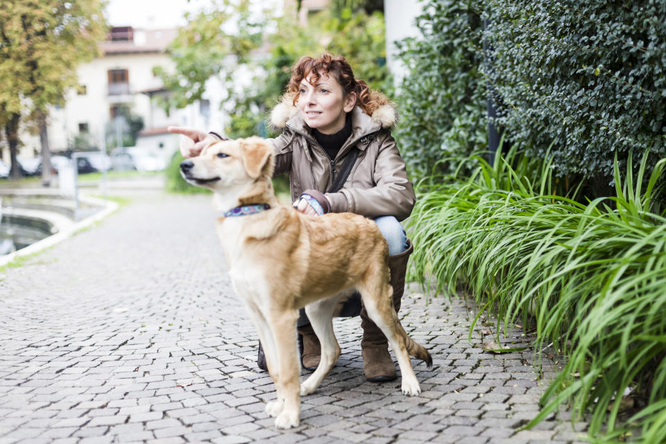 Traveling during the holidays? Consider asking a family member, friend or pet sitter to take care of your pet. (Photo: Getty Creative)
