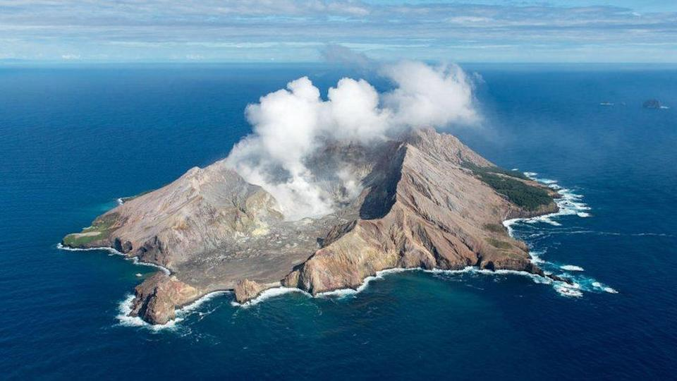 White Island erupted last year while a tourist group was visiting it