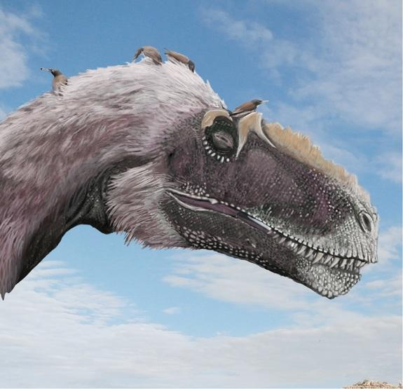 Shrinking Dinosaurs Evolved into Flying Birds