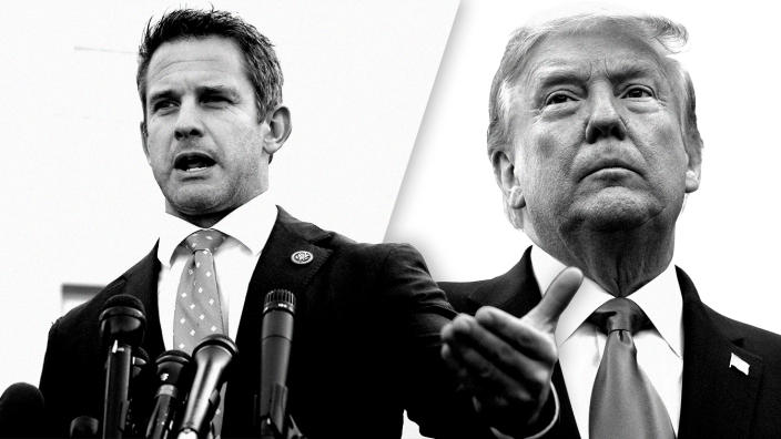 Adam Kinzinger and Donald Trump
