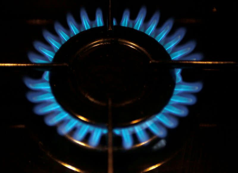FILE PHOTO: A gas burner is pictured on a cooker in a private home in Bordeaux