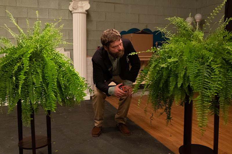 Zach Galifianakis is between two ferns in 'Between Two Ferns: The Movie' (Photo: Adam Rose/Netflix)