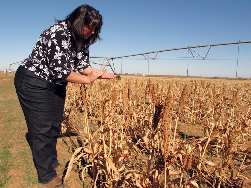 After disasters, county struggles against drought