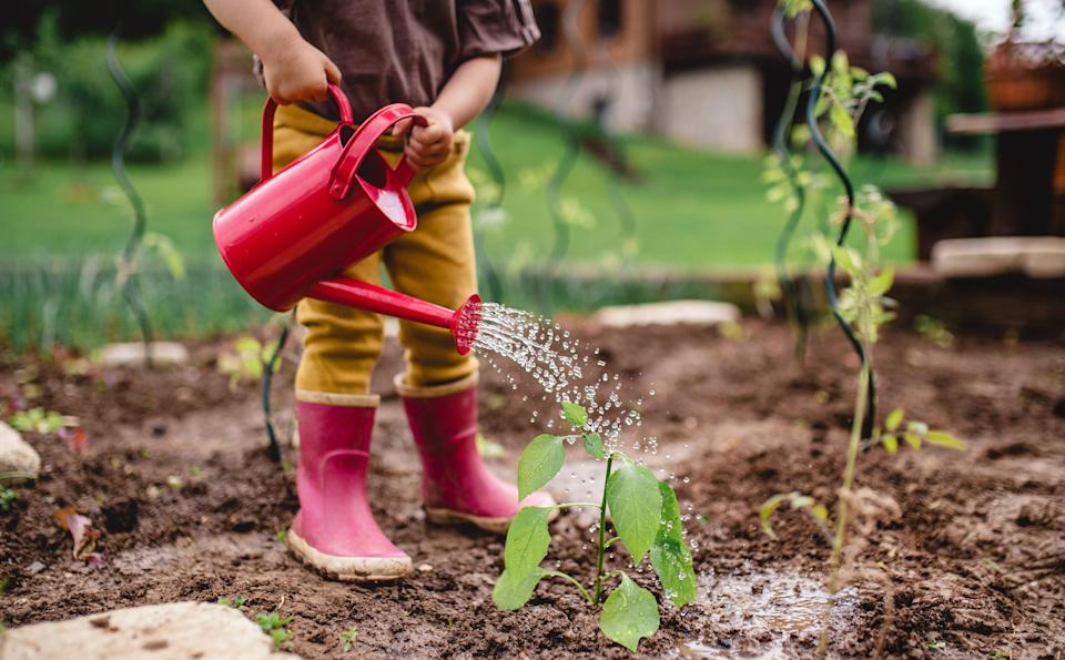 It's ideal to nurture as much green space as possible (Photo: Halfpoint Images via Getty Images)